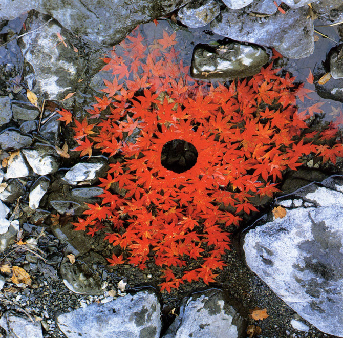 tw_land-art-goldsworthy05_670