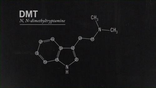 dmt the spirit molecule full version joe rogan instagram